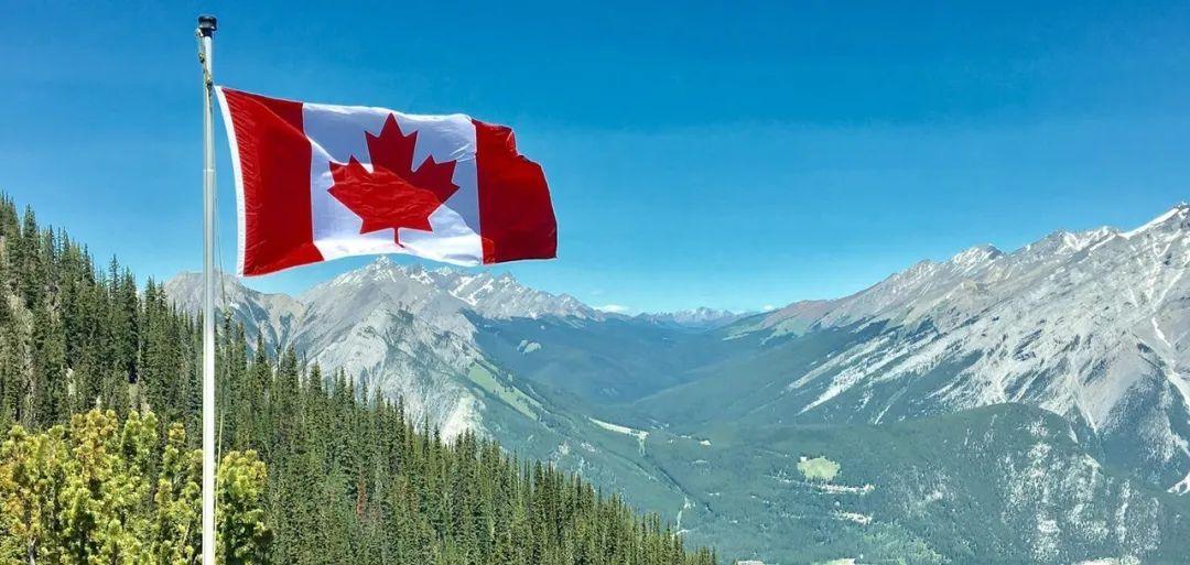 醒醒吧!!还在水深火热苦等美国绿卡?是隔壁加拿大枫叶卡不够香吗??